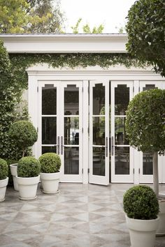 Boxwoods and pretty doors