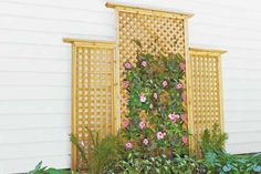 Photo: Kolin Smith | thisoldhouse.com | from How to Build a Trellis