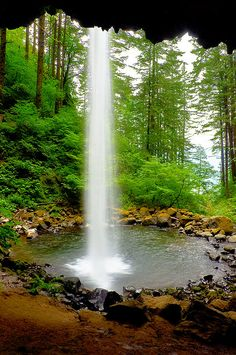 Ponytail Falls in the Columbia River Gorge, Oregon