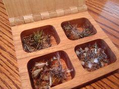 Wooden fly box with a mix of sakasa kebari and western dry flies