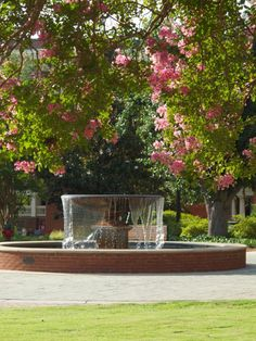 The central campus fountain at spring time