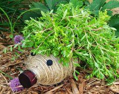 Hedgehog planter from plastic bottle DIY