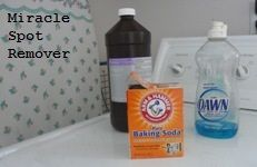 Miracle Spot Remover