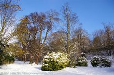 """The Victorian Zig Zags Park under Snow, Dover, Kent, England, UK. A new Castle Hill Road was built in 1799, old one (stage-coach route) converted into Zig-Zags walk, """"ornamented with trees and shrubs"""", when John Adcock first became mayor in 1885. Devastated by 1987 hurricane. Right: Dover Castle. In front: Connaught Park. Behind: Laureston Place and Victoria Park.  Winter (December 2010): Dover History, Parks and Gardens, Trees, Nature and Landscape. See: http://www.panoramio.com/photo/44851596"""