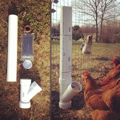 DIY chicken feeder from PVC pipes @Krystle Pleitz Hickam @Lynn Hickam park park, chicken feeder, pvc pipe