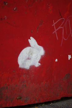 White Rabbit by sylvie bergere