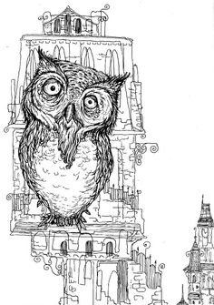 little owl and its belfry. Jessica Gadra