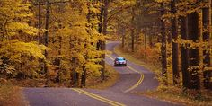 Scenic Fall Drives: Wisconsin's Rustic Roads (Wisconsin is so f'n beautiful in the fall!!)