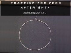Who's planning to make the food come to you, while you do other tasks? Trapping for Food After SHTF