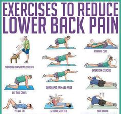 Exercises to reduce lower back pain.