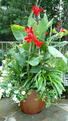 Seasonal Planters For The Pool - Beyond the East End, NY - Hamptons.com