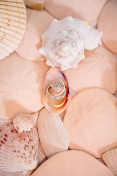 vintage-inspired ring, photo by Jenna Saint Martin http://ruffledblog.com/driftwood-wedding-inspiration #weddingring #rings