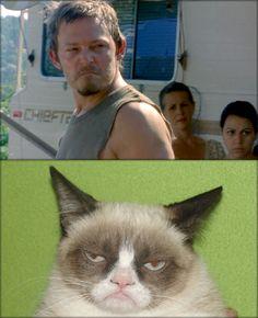 HAHAHAHA!!!  (Daryl-Walking Dead)