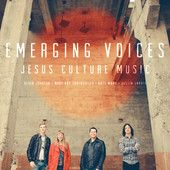 Music Entertainment – The Music Entertainment of the 21st Century! » Emerging Voices – Various Artists