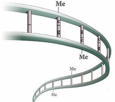 Lack of DNA modification creates hotspots for mutations — SFARI