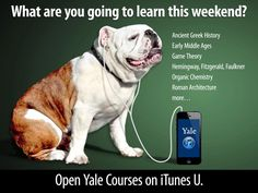 never stop learning....  free yale courses on iTunes  http://itunes.yale.edu/