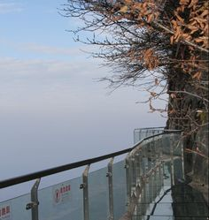 Terrifying Glass Skywalk on the Side of Tianmen Mountain, Hunan Province, China. Cliff is 1,430 meters high! (look down)