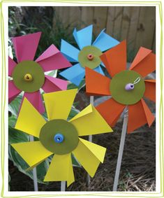 flower-pinwheels1.jpg for garden July 17
