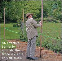 Deer Fence - Lee Valley Tools