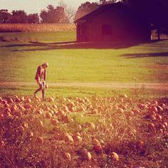 Fall time.