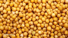 """Mighty healing in a tiny package - unleash the power of mustard seed for cancer, inflammation and more 