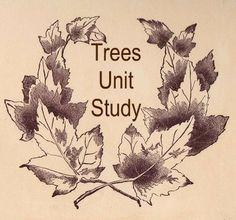 Trees Unit Study