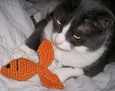 Here fishy DIY crocheted fish toy