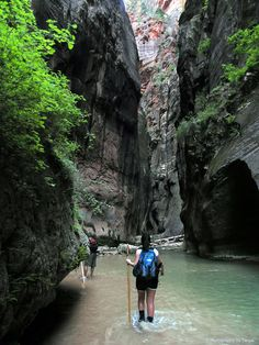 """""""The Narrows"""" in Zion National Park, Utah. It's a 16 mile hike... and it's gorgeous."""