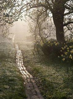 pathway, garden paths, sunris, yellow brick road, orchard, bricks, place, the road, walk