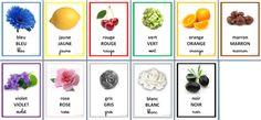 Imagier: les couleurs, bleu, vert, jaune, rouge, violet, marron, Cp, Ce1