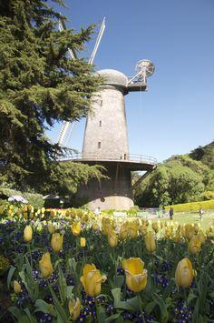 Best (secret) Gardens in SF