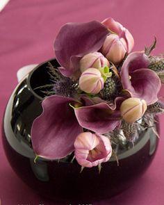Lotus Flower- Charleston