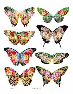 bellas mariposas butterfli wing, collage butterflies, diy butterflies decor, craft cards, paper butterfly prints, craft butterflies, printed paper, diy shirt print, paper crafts