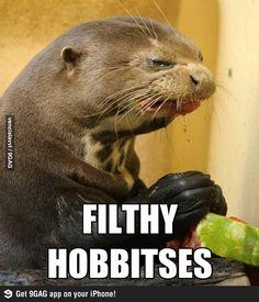 Gollum otter :D