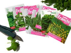 Italian Herb Seeds for growing your own fresh herbs.