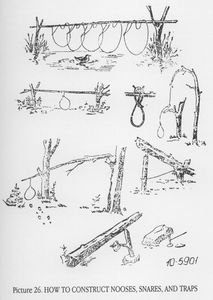 Printable Wilderness Survival Guide | There are numerous types of survival snares, two of which are outlined ...