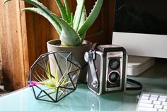 Diamond //made with recycled glass//  Medium by megamyers on Etsy, $60.00