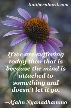 Is your mind attached to something and not letting go? I like to refer to it as a recipe for suffering.