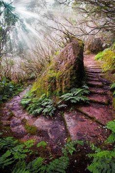 top 20 nature photos