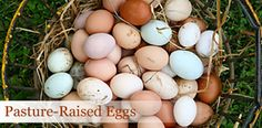 Eggs are good for you!