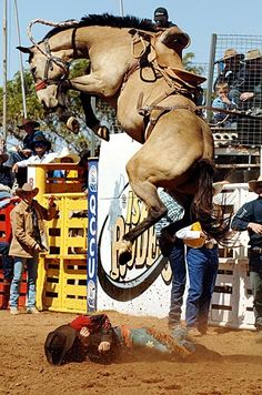 """Rodeo! Dodge City, Kansas Roundup Rodeo, """"The Greatest Show on Dirt"""" is a large PRCA rodeo attracting professional cowboys all over the country hoping to earn 'points' to qualify for the National Finals"""