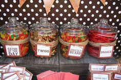 Camping theme Birthday Party, love these ideas!