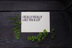 I  really really like you a lot poster prop // Styling by Sweet Woodruff and photo by Vicky Starz Photography