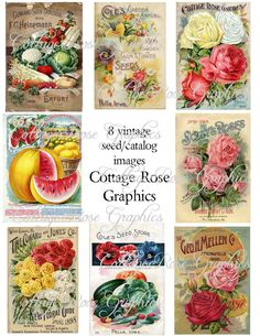 Vintage Seed or Flower Catalog Large by CottageRoseGraphics, $3.75