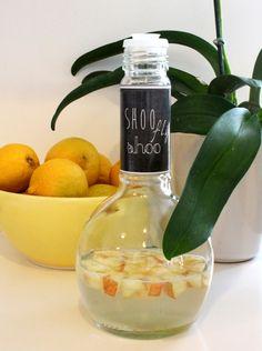 Shaker Bottle Fruit Fly Trap