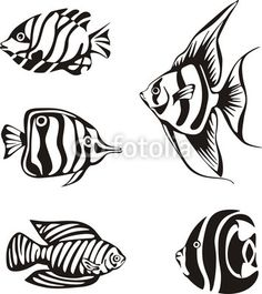 Under The Sea On Pinterest Tropical Fish Fish Tattoos And Coloring Pages