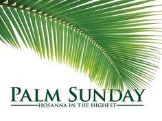graphic design, seri graphic, palm sunday, church graphic