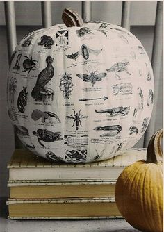 Between Naps on the Porch: Country Living Inspired: Découpage a Pumpkin