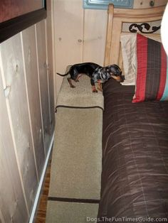 See how I built this dog ramp for my Dachshund after she had back surgery. #dogs #diy
