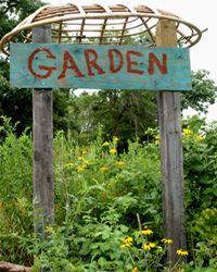 School Garden Wizard garden signs, schoolgarden, schools, school garden sign, university of illinois, wizard, garden idea, kid, school gardens